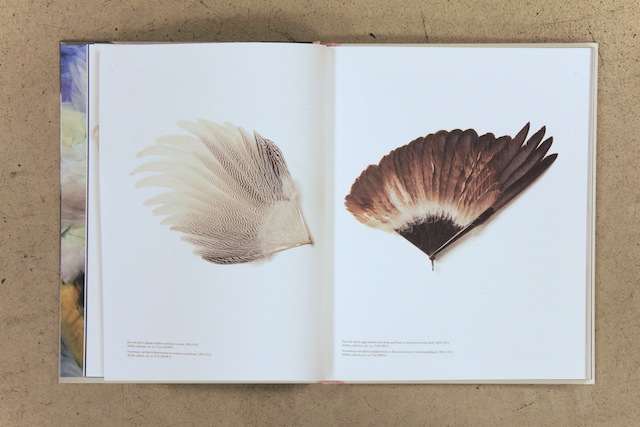 Catalogue Birds of Paradise published by Lannoo. Photo: Suzan Rylant