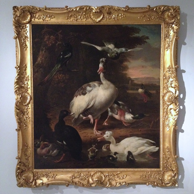 Birds by Melchior d'Hondecoeter (Utrecht 1636 - Amsterdam 1965) a loan by the Royal Museum of Fine Arts Antwerp at the Bords of Paradise expo at MoMu